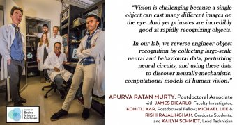 Apurva Ratan Murty: High-Level Vision