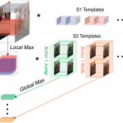Invariant representations for action recognition in the human visual system