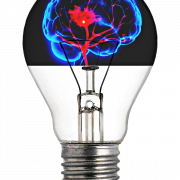 lightbulb with a brain inside