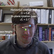 Face Looking Behavior and Image Statistics in the Real World