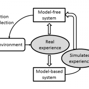 Competition and cooperation between multiple learning systems