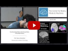 Embedded thumbnail for Functional Specificity in the Human Brain: A Very Brief History (12:41)