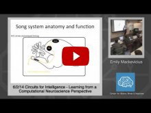 Embedded thumbnail for Emily Mackevicius: Learning from a Computational Neuroscience Perspective