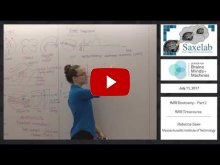 Embedded thumbnail for fMRI Bootcamp Part 2 - fMRI Timecourse