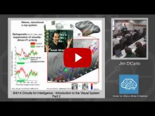 Embedded thumbnail for Jim DiCarlo: Introduction to the Visual System, Part 2