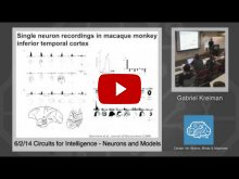 Embedded thumbnail for Gabriel Kreiman: Neurons and Models