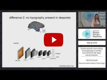 Embedded thumbnail for Explaining brain area scaling and topography in monkey and human IT with deep neural networks