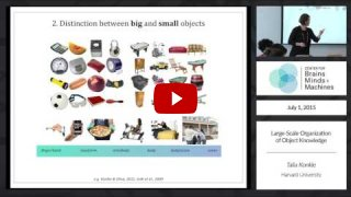 Embedded thumbnail for Large-Scale Organization of Object Knowledge [part 2]