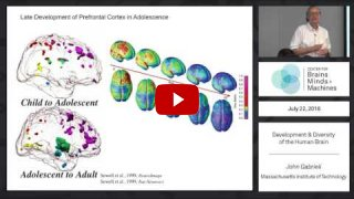 Embedded thumbnail for Development and Diversity of the Human Brain