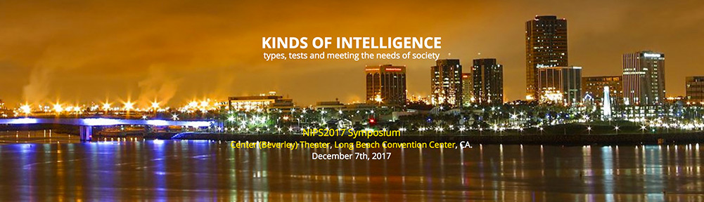 Kinds of intelligence types, tests and meeting the needs of society banner