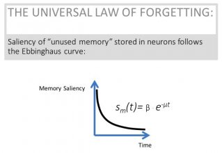 Figure No. 2 from CBMM Memo No. 068 - The Universal Law of Forgetting
