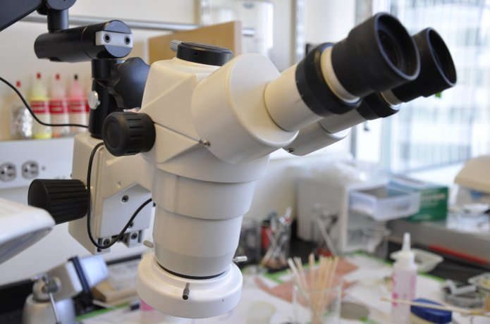 Photo of a microscope.