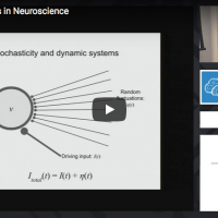 Dynamical Systems in Neuroscience