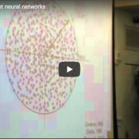 Learning in Recurrent Neural Networks