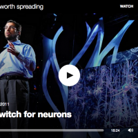 A light switch for neurons (2011)