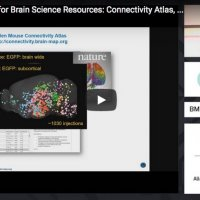 The Allen Institute for Brain Science Resources: Connectivity Atlas, Cell Types Database, Brain Observatory