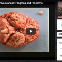 The Sciences of Consciousness: Progress and Problems