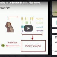 Using encoding to understand neural algorithms