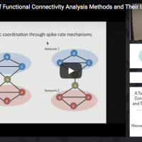 A Tutorial Review of Functional Connectivity Analysis Methods and Their Interpretational Pitfalls