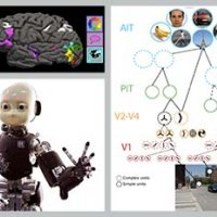 Brains, Minds, and Machines Summer Course