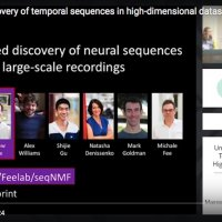 Unsupervised discovery of temporal sequences in high-dimensional datasets