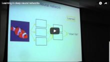 Learning in Deep Neural Networks
