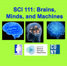Brains, Minds, and Machines