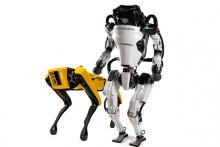 two of Boston Dynamics' robots