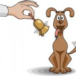 hand ringing bell and dog wagging tail