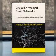 Visual Cortex and Deep Network