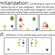 Early Reasoning about Affiliation and Kinship