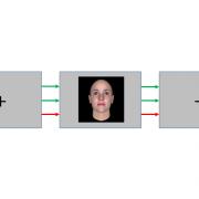 Task Dependence of Visual Representations