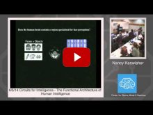 Embedded thumbnail for Nancy Kanwisher: The Functional Architecture of Human Intelligence