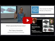 Embedded thumbnail for What's special about human brains?
