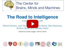Embedded thumbnail for The Road to Intelligence