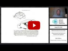 Embedded thumbnail for Hippocampal mechanisms of memory and cognition