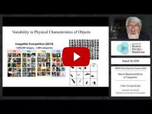 Embedded thumbnail for Neural Representations of Categories