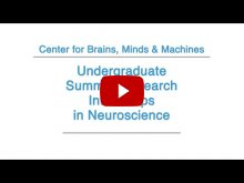 Embedded thumbnail for 2015 Undergraduate Summer Research Internships in Neuroscience