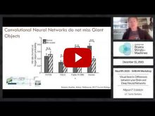 Embedded thumbnail for Visual Search: Differences between your Brain and Deep Neural Networks