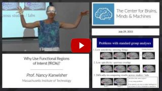 Embedded thumbnail for Why Use Functional Regions of Interest (fROIs)?