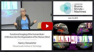 Embedded thumbnail for Functional Imaging of the Human Brain: A Window into the Organization of the Human Mind (1:18:25)
