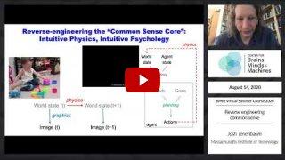 Embedded thumbnail for Reverse engineering common sense